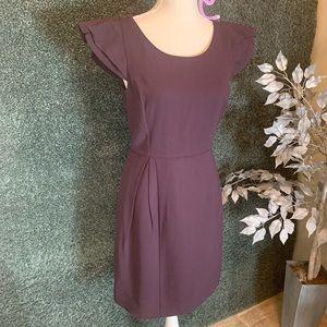 J. Crew Purple A Lined Dress